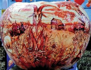 GO-MR-2-Passion-for-pumpkins301